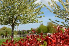 City of Worcester in England. View through blossom covered tress towards the city of Worcester, England Royalty Free Stock Image