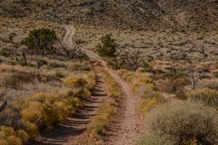 Blue Diamond Off Road Trails Stock Images