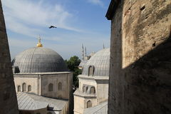 View on the Blue Mosque Royalty Free Stock Photography