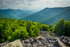 View of the Blue Ridge from Blackrock Summit, in Shenandoah Nati Royalty Free Stock Photography