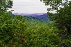 View of the Blue Ridge Mountains Royalty Free Stock Photos