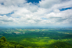 View of the Blue Ridge Mountains from Turk Mountain in Shenandoa Royalty Free Stock Photo