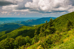 View of the Blue Ridge from an overlook on in Shenandoah National Park Royalty Free Stock Photography