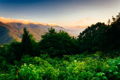 View of the Blue RIdge at sunrise, seen from Mt. Mitchell Overlo Royalty Free Stock Images