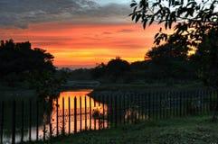 Sunset near JP Park, Bangalore Stock Photography