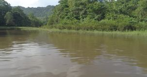 View from boat of tropical green forest with river. View from boat of beautiful natural scenery of river in Asia tropical green forest with mountains - video in stock video