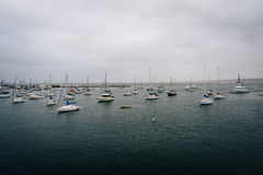 View of boats in the harbor from the Fisherman's Wharf  Royalty Free Stock Image