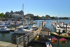 A view of boats at the Waterfront, Victoria Stock Photo