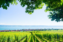 View on Bodensee with alp mountain range in background Stock Images
