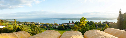 View of Bodensee. View of the beautiful Bodensee lake in south Germany as viewed from the town of Uberlingen Royalty Free Stock Images