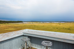 View at a bog landscape Royalty Free Stock Image