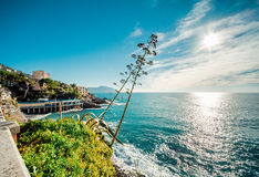 View of Bogliasco Royalty Free Stock Photo
