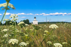 View through Bogolubovo meadow towards the Church of the Intercession of the Holy Virgin on the Nerl River. Bogolyubovo meadow has rich and variety floristic Royalty Free Stock Photos