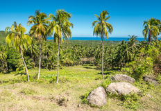 View of Bohol island Phils Royalty Free Stock Photography