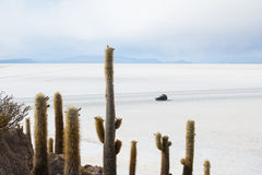 View of the Bolivian salt flats Royalty Free Stock Photo