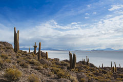 View of the Bolivian salt flats. From Fish Island Royalty Free Stock Images