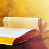 View of book. At sunny day Royalty Free Stock Photo