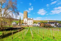 View of the Boosenburg in Ruedesheim, Germany royalty free stock image