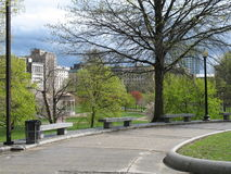 View of Boston Common Royalty Free Stock Images