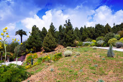 View of Botanical garden of Barcelona Stock Photo