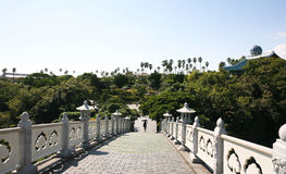 View on Botanical garden in Jeju  Island, botanical garden,volcanic island Royalty Free Stock Photo