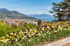 View from Botanical Gardens of Villa Taranto to Lake Maggiore and Intra Verbania, Italy Royalty Free Stock Images