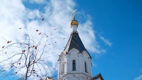View from the bottom of beautiful golden dome and cross of the Russian Orthodox church in sunny autumn day against blue stock footage