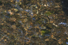 View of the bottom of a river Stock Photography