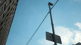 View from the bottom of street lights and tension wires for a trolleybus near the building against a blue cloudy sky royalty free stock photo