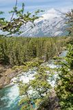View of Bow Fall and Bow River Royalty Free Stock Photos
