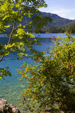 View through branches to lake eibsee Stock Photography