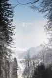 View through branches to a mountain peak hiding behind fog. Majestic view through icy branches to a mountain peak hiding behind fog Stock Image