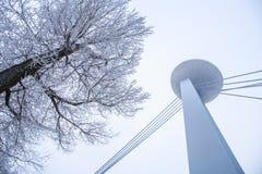View from Bratislava Promenade near bridge Slovak National Upris. Ing, Slovakia Stock Images
