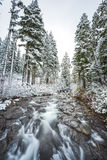 View on the bridge,scenic view of Narada falls on snow day in mt Stock Image
