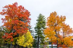 Fall colors in North America. A view of the brilliant and eclectic colors that take over the entire Adirondacks region in New York state of USA during the peak stock image