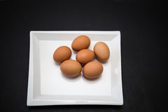 View of brown farm fresh chicken eggs in white square stylish ceramic plate Royalty Free Stock Photos