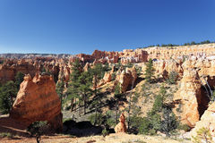 View of Bryce Canyon Royalty Free Stock Photos