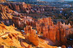 View in Bryce Canyon National Park. Morning view in Bryce Canyon National Park in Utah Stock Photos