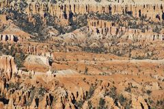 View of Bryce Canyon. Utah. USA Royalty Free Stock Photo