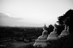 View Buddha statue Stock Photos
