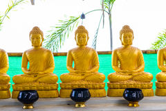 View of buddha statue Stock Photos