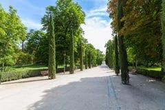 The Buen Retiro Park - Madrid - Spain. A view of the Buen Retiro Park - Madrid - Spain Royalty Free Stock Image