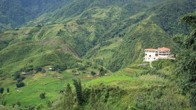 View of building and green terraced rice fields. Aerial view of building and green terraced rice fields on the mountain at Cat Cat village in Sapa, Vietnam Royalty Free Stock Image