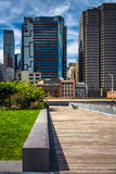 View of buildings in the Financial District from Pier 15, at Sou Royalty Free Stock Photography
