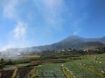 Slamet Mountain. View from Bumi Jawa Raya Road, you can enjoy this beautiful view everyday in the morning as long as the wheater is good. Mount Slamet 3432 meter stock photos