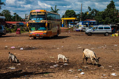 View of a bus station in Pakse Royalty Free Stock Photography