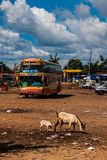 View of a bus station in Pakse Royalty Free Stock Photos