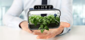 Businesmann holding a Digital vegetal plant connected. View of a Businesmann holding a Digital vegetal plant connected stock image