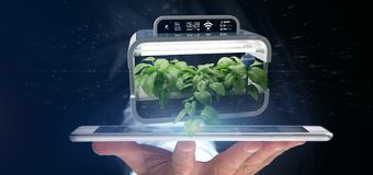 Businesmann holding a Digital vegetal plant connected. View of a Businesmann holding a Digital vegetal plant connected stock photos