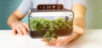 Businesmann holding a Digital vegetal plant connected. View of a Businesmann holding a Digital vegetal plant connected stock images